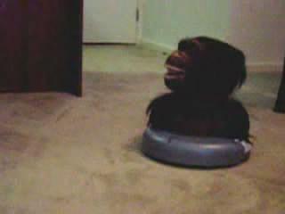 猩猩吸尘机