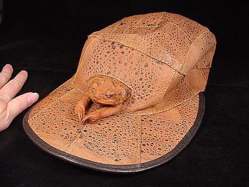 青蛙王子帽