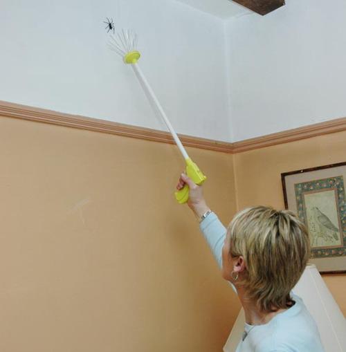 捉蜘蛛工具