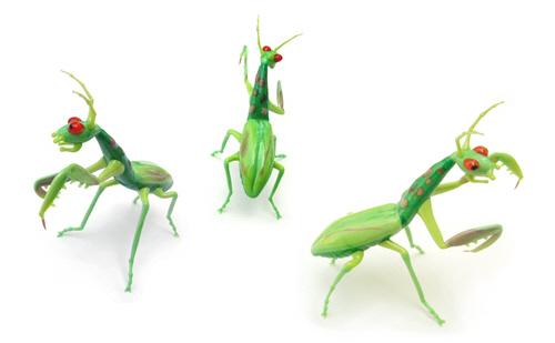 长得好像蚂蚁