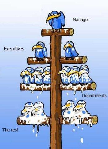 企业运营说明