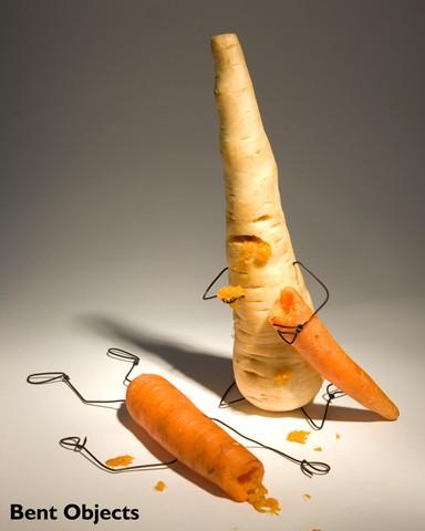 右边这位其实叫欧防风,欧洲萝卜