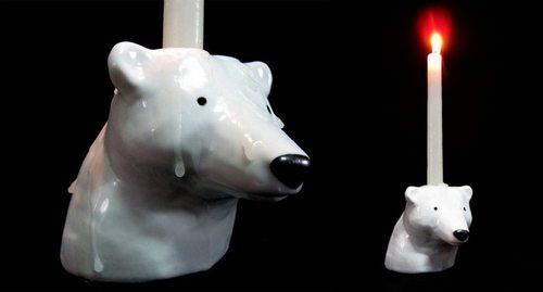 """""""北极熊的毛其实是透明的,看起来是白色是因为阳光的折射"""",话说回来,北极熊有没有汗腺呢"""