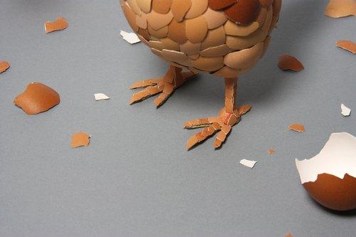 我打赌,一定有很多人以为母鸡下蛋是因为有公鸡给它授精,错!母鸡成熟以后不管有没有受精都会定期排卵下蛋,只是没受精的蛋孵不出小鸡而已!