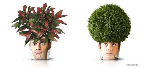 左边是没头脑,右边是不高兴