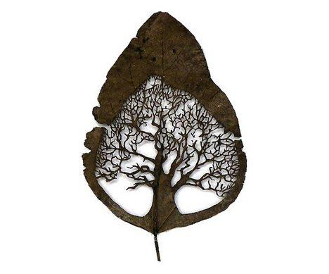 利用叶脉本身纹路刻出来的树枝