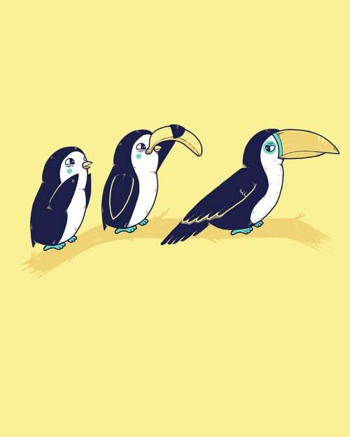 其实我觉得主要的萌点在左边第一只企鹅身上