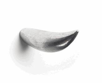 北溟有鱼,其名为鲲