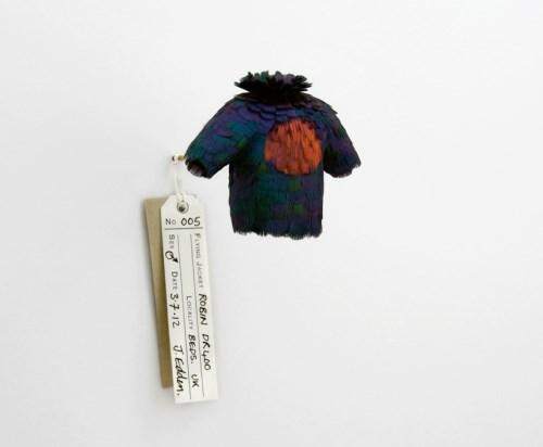 手机上网难以查询资料,这系列羽毛小衣服的命名怪有意思的等以后再补充介绍,有一些是战机名称,这个叫 05 robin DR400