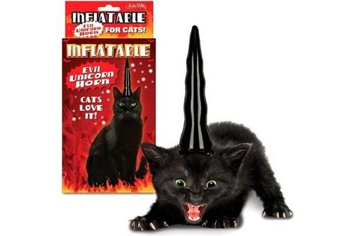 """""""报告黑猫角长,一只耳已抓住!"""""""