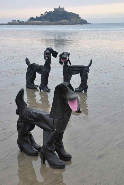 公狗都在山上,母狗都在水边