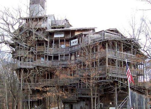 小时候我也曾经梦想有这么大的树屋,而且树是绿的