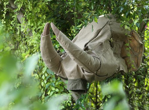 大象,大象,你为什么没鼻子