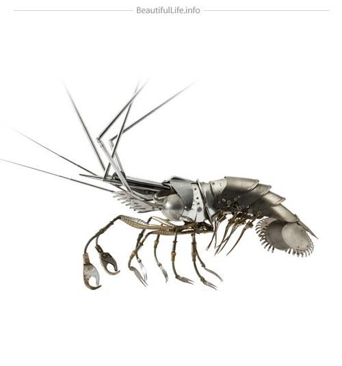 奇怪为什么可以吃虾的人多,吃昆虫的人少呢?因为水里的东西看起来像是洗干净的?