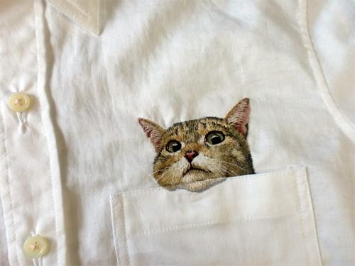 人们之所以想知道猫在看什么,是因为无法从自己的角度理解猫的行为吧。