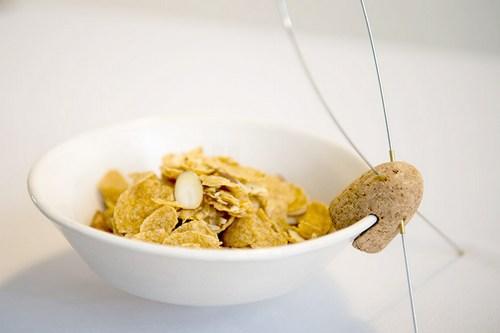 今天介绍的是麦片――――――――――――――――外面的碗。